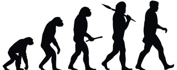 Evolution as Our Source of Meaning