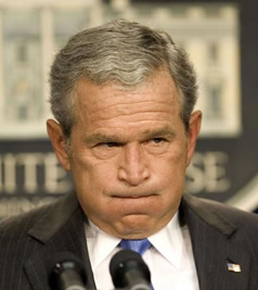 bush_frustrated