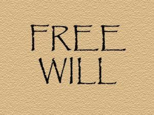 Which Free Will Do We Have?