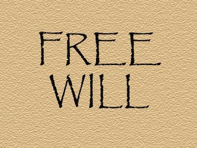 , Which Free Will Do We Have?