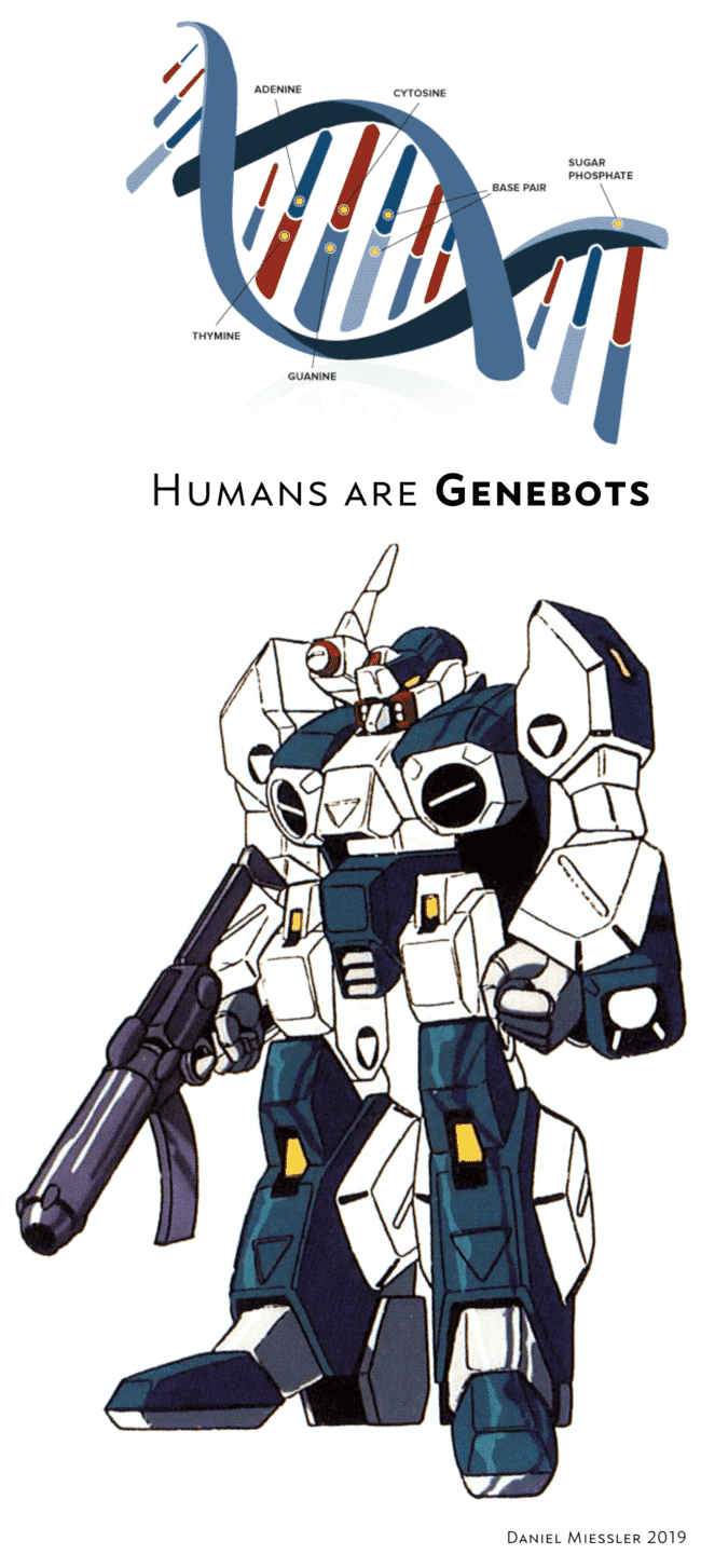 , Humans Are Genebots