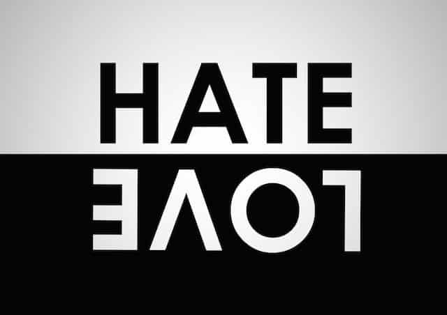 Image result for love and hate